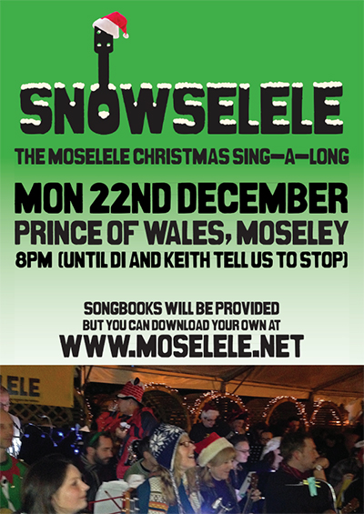 snowselele_poster