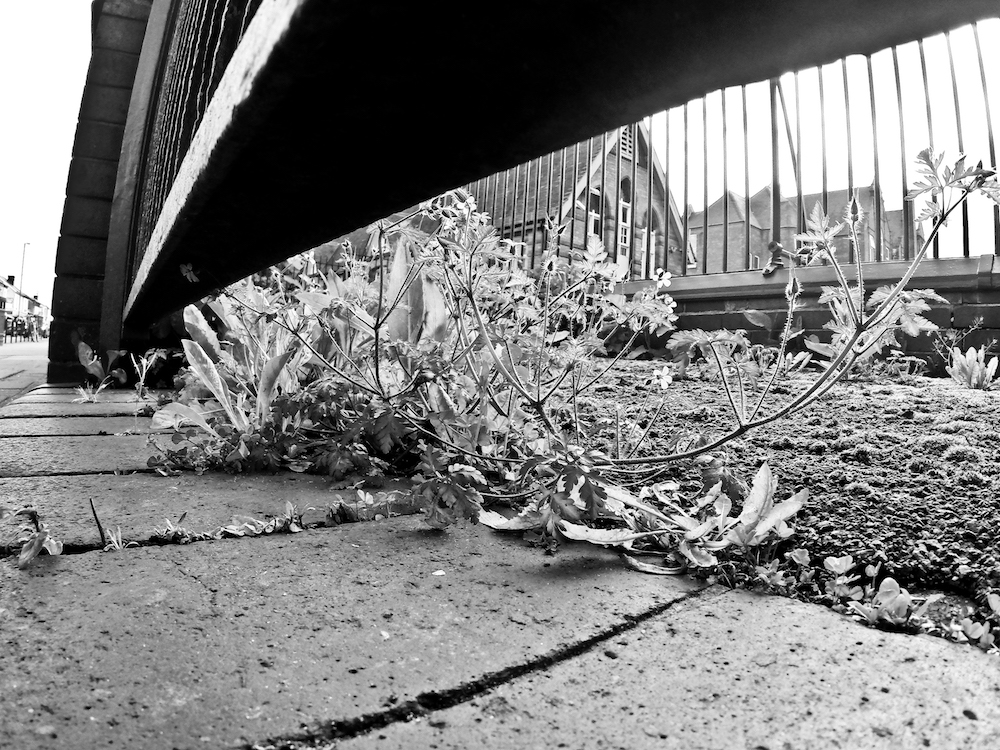 Under the bridge to Stirchley School